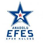 anadolu-efes-logo